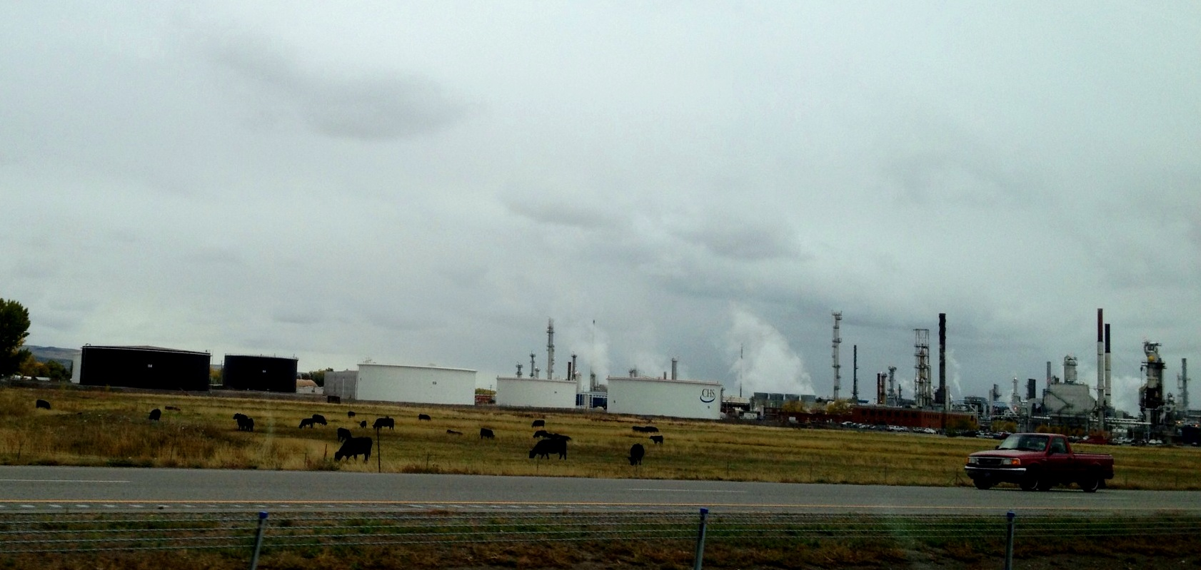 I guess we can have the cows inspect the refinery.