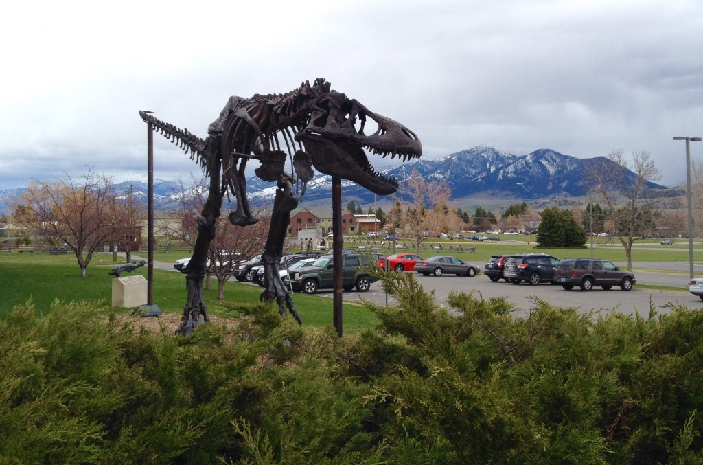 Entrance to the Museum of the Rockies in Bozeman, MT.